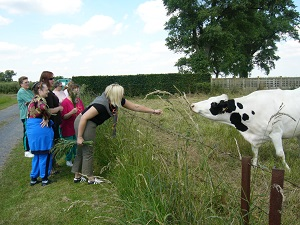 Visite et soins aux animaux.