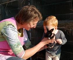 Caresse et soins aux animaux.