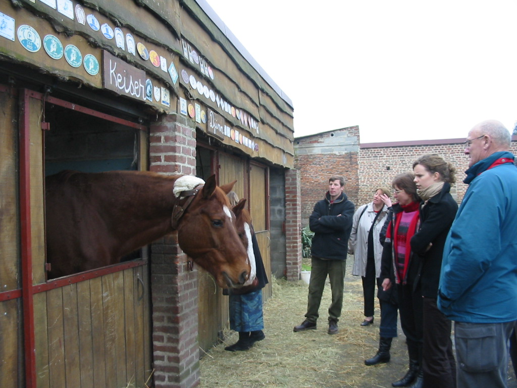 Boxe à chevaux sont au bout du jardin du gîte.