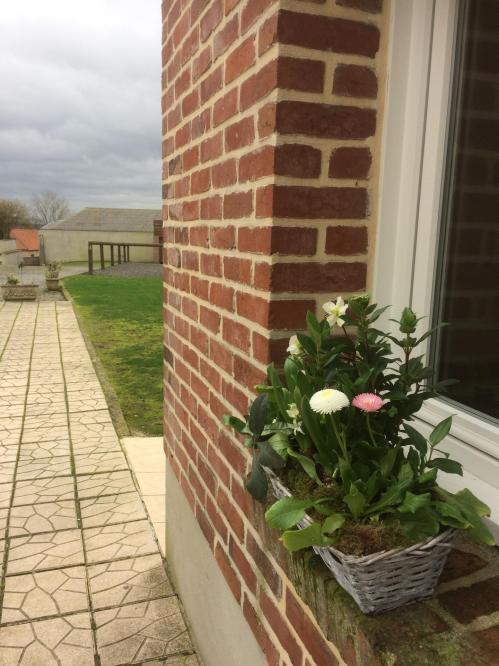 Terrasse fleurs